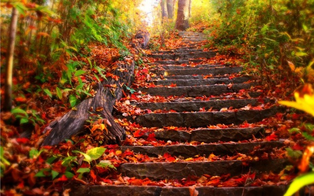 imgblog mountain steps