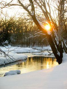 imgblog sun in winter